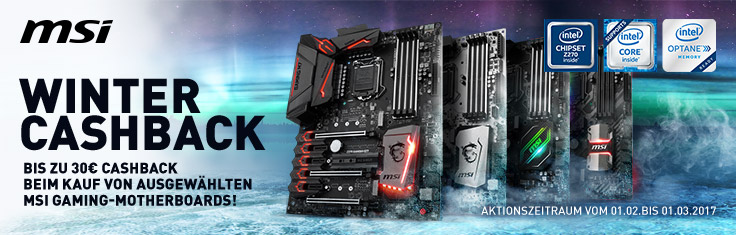 MSI Winter Cashback